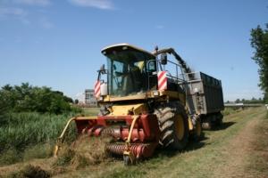 biogas-da-sfalcio-di-erba-sfalcio-e-trincia-fonte-veneto-agricoltura
