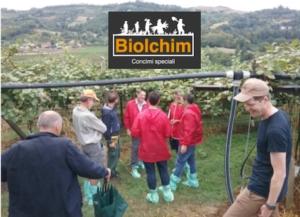 biolchim-biogold