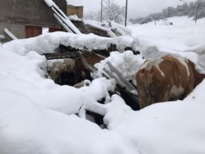 Sisma e gelo, grave la situazione in centro Italia