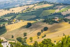 campi-campo-paesaggio-agricolo-collina-agricoltura-veduta-dall-alto-campagna-fattoria-azienda-agricola-aziende-agricole-by-claudio-colombo-fotolia-1000x669