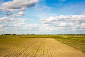 campo-agricolo-agricoltura-by-igor-mojzes-fotolia-750