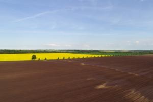 campo-arato-colza-by-contrastwerkstatt-fotolia-750