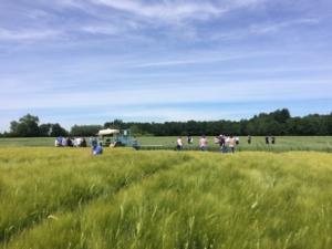 EuroChem Agro: campi demo e incontri in campo lungo tutta la penisola