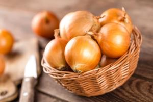 Cipolla, produzioni su e mercato giù - Plantgest news sulle varietà di piante