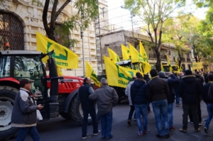 """Martina: """"Puntare sull'etichettatura per difendere il made in Italy"""""""