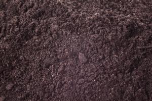 compost-terra-suolo-terriccio-by-jaroslavkettner-fotolia-750