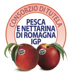 Il Consorzio della pesca di Romagna Igp conquista la tutela - Plantgest news sulle varietà di piante