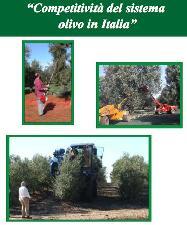 cra-isol-competitivita-sistema-olivo-olio-italia-20080307