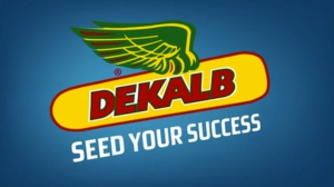 dekalb-groundbreakers-success