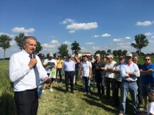 demo-frumento-maggio-2017-fonte-consorzio-agrario-di-parma