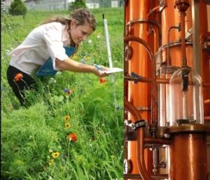 distilleria-verde-giardini-formazione-bevande-fonte-fem-fondazione-edmund-mach