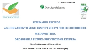 drosophila-seminario-lameta