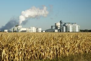 Biocarburanti di prima generazione: l'Ue fa marcia indietro