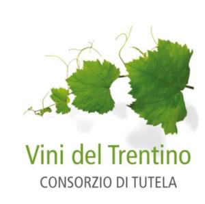 """Fem-Consorzio vini: """"Meno chimica in viticoltura"""""""