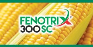 Fenotrix 300 SC per il diserbo del mais