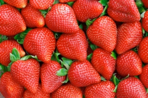 fragole-by-mariusz-blach-fotolia-750