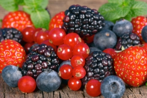 frutti-di-bosco-piccoli-frutti-ribes-mirtilli-fragole-more-by-merlin7125-fotolia-750