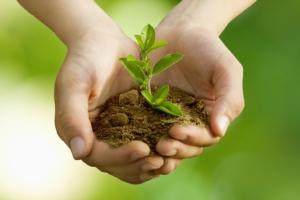 germoglio-pianta-mano-ambiente-natura-ecologia-by-carballo-fotolia-750x500