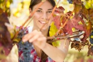 Image Line e Donne della Vite: la stessa passione per l'agricoltura e l'innovazione