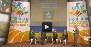 """""""I mezzi tecnici biologici per l'agricoltura sostenibile"""""""