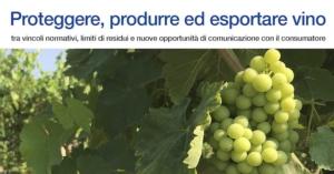 image-line-convegno-proteggere-produrre-esportare-vino-201701271
