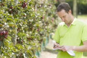 innovazione-ricerca-frutta-verdura-by-frank-fotolia-750