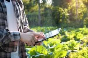 internet-agricoltura-tecnologia-digitale-by-sodawhiskey-fotolia-750