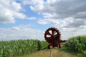 irrigazione-by-elke-hotzel-fotolia-750
