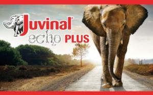 juvinal-echo-plus-sumitomo-20160309