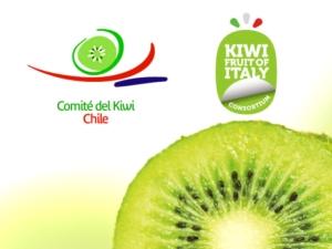Kiwi, patto di collaborazione tra i produttori di Italia e Cile - Plantgest news sulle varietà di piante