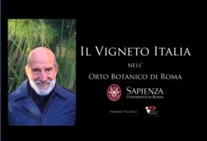 Vigneto Italia, Roma di nuovo caput mundi del vino - Plantgest news sulle varietà di piante