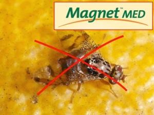 magnetcop2-gowan