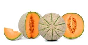 Melone, il 2017 ha il vento in poppa