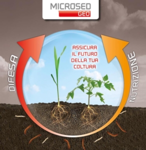 Microsed Geo assicura il futuro della tua coltura