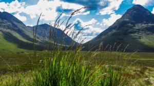 montagne-scozia-scotland-highland-natura