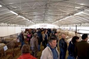 mostra-agricoltura-faenza-edizione-2015