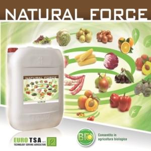 La forza delle proteine vegetali