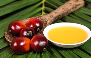 L'olio di palma nuoce all'agricoltura italiana