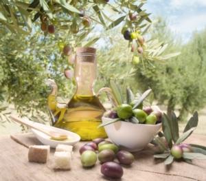 olivo-e-olio-fonte-progetto-ager-agrolimentare-e-ricerca