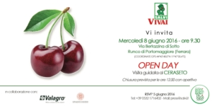 Ciliegio: open day con visita guidata al ceraseto