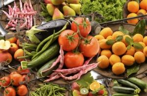 L'agricoltura traina la ripresa economica