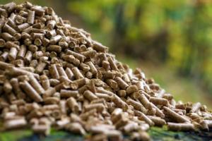 pellet-bioenergie-fonti-rinnovabili-by-dani-vincek-fotolia-750
