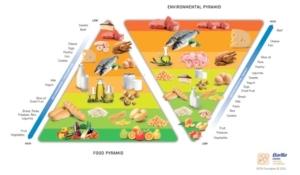 piramide-cibo-ambiente-barilla