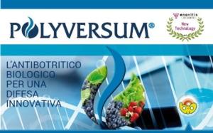 È arrivato Polyversum, l'antibotritico biologico per una difesa innovativa