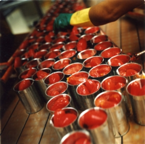 Pomodoro da industria, c'è l'accordo anche per il Centro-Sud