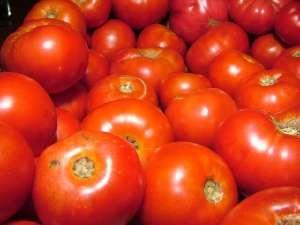 pomodoro-da-industria
