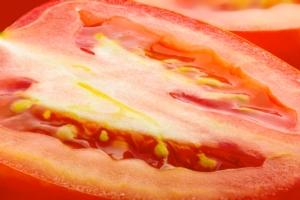 pomodoro-pomodori-tagliato-dettaglio-fotoliaby-maxal-tamor-fotolia-750