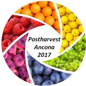 postharvest-ancona-20170519