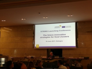 presentazione-progetto-string-fonte-lorenzo-pelliconi-agronotizie
