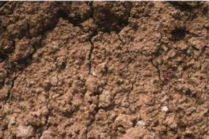 sacom-suolo-1
